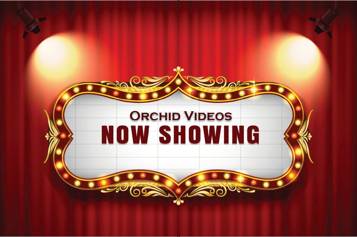 Orchid Videos Now Showing